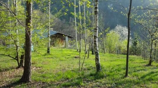 Casa Payer, una casa ecológica en el bosque, en Piamonte