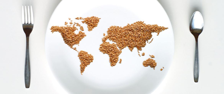 Evitando el desperdicio de alimentos