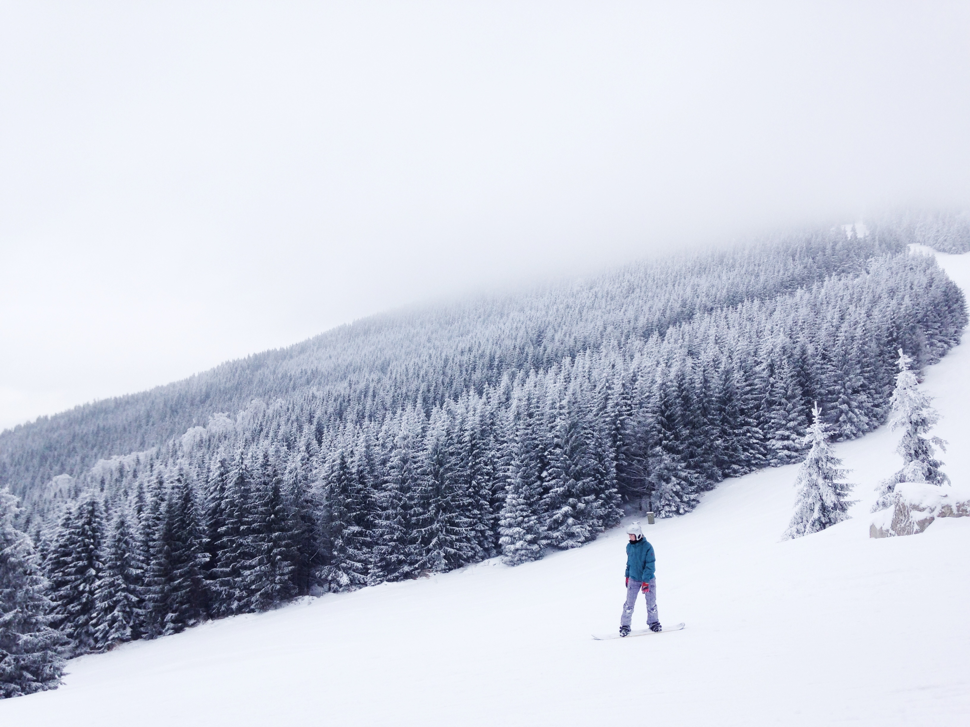 Snowboard en la nieve ,fotos de Tomas Kodydek, a través de unsplash