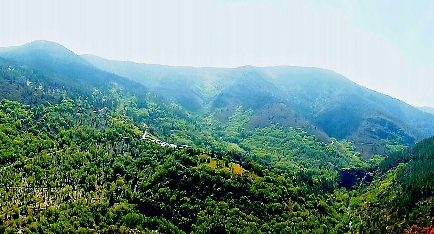 Bosques de O Courel, Galicia