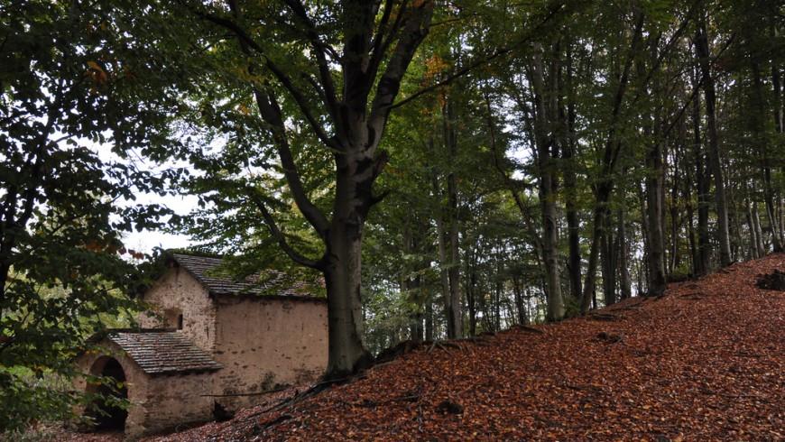 Entre los bosques de la Valsesia