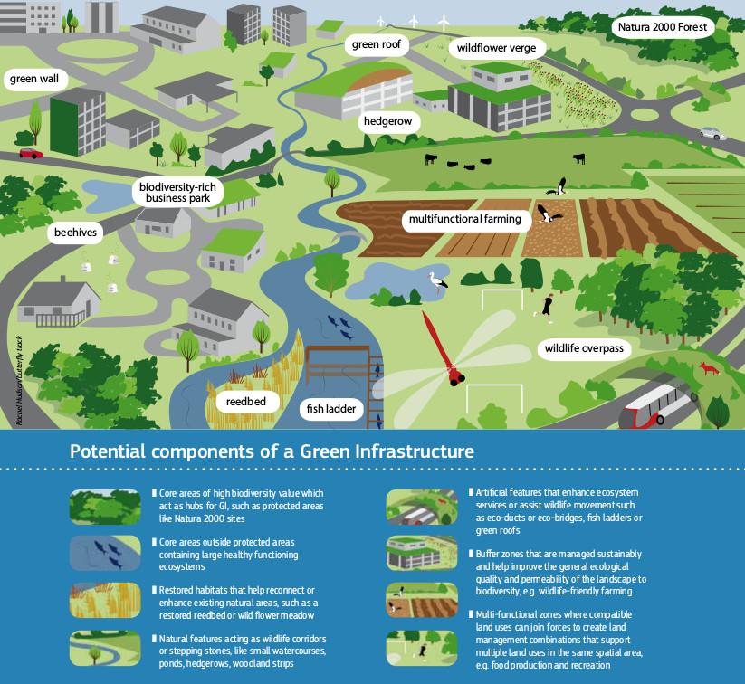 """La infraestructura verde es el conjunto de áreas naturales y semi-naturales, u otros elementos del medio ambiente, que permiten que los ciudadanos se beneficien de sus numerosos servicios relacionados con la salud, la calidad del aire, el clima, etc. Imagen tomada de """"La construcción de una infraestructura verde para Europa"""", a través de ec.europa.eu"""