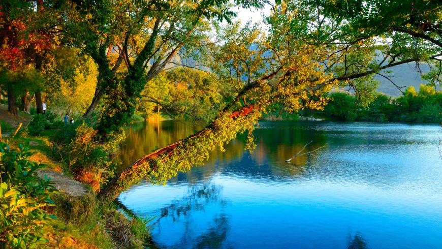 Follage en el Lago de Telese, cerca de Benevento, foto de silvio sicignano via Flickr