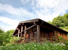 La Casa dei Lupini