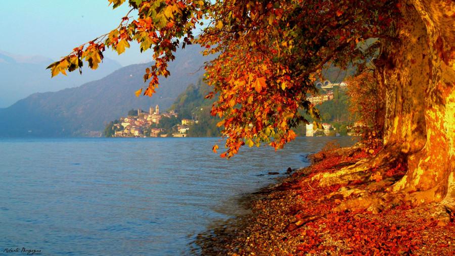 Autunno-sul-Lago-di-Como-BORGHY52