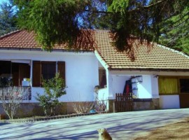Una casa nel Bosco, Génova