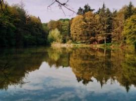 Parque Regional Boschi di Carrega