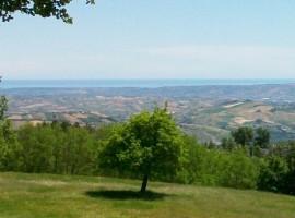 El jardín y la vista desde Il Bosco dei Daini