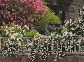 Los jardines secretos de Venecia