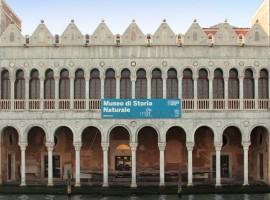 Museo de Historia Natural de Venecia