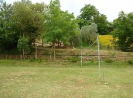 Campo de volley y caballos