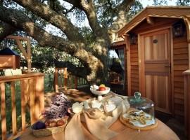 tree-house-11-270x200