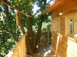Il giardino dei semplici, Manta, Cuneo, Italy