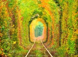 Trayecto del ferrocarril desde Orzhiv Klevan a Ucrania