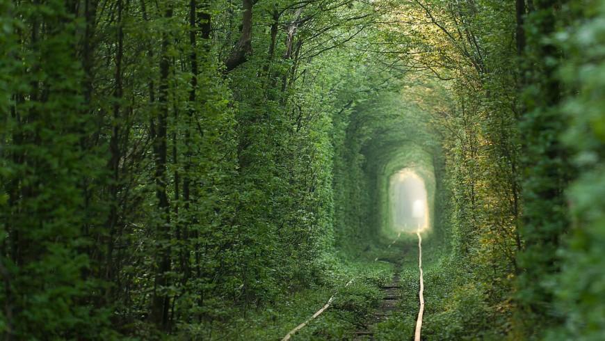 Paisaje verde del Túnel del Amor