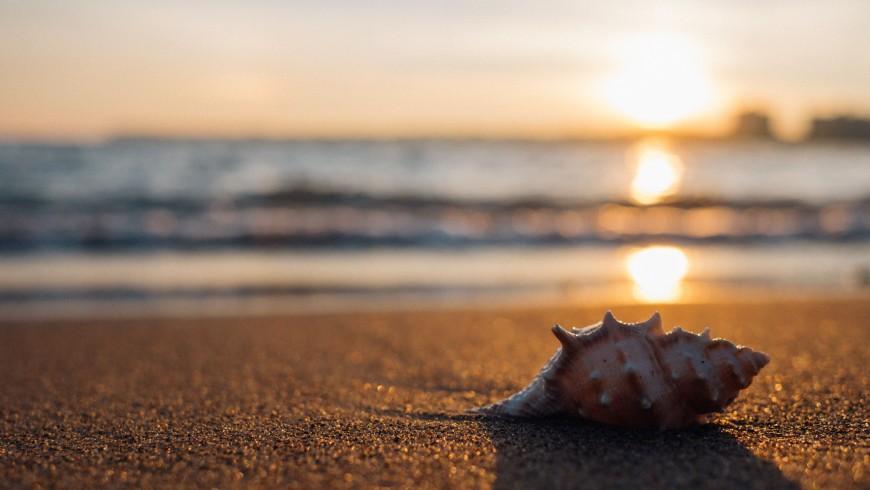 Paisaje de una playa. Las 10 simples reglas para respetar el medio ambiente en la playa
