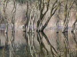 Lago del Carucedo, León, España. Fin de semana en la naturaleza:Descubre estos 10 lagos en España