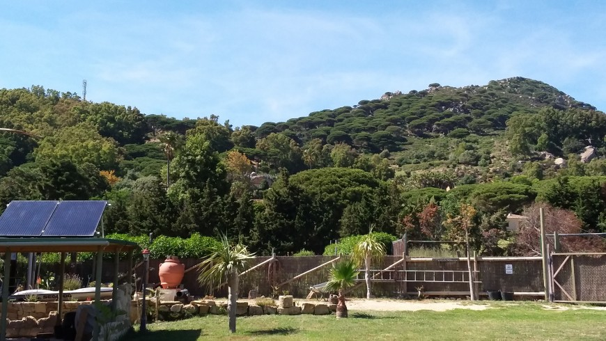campaña Andaluza campamiento