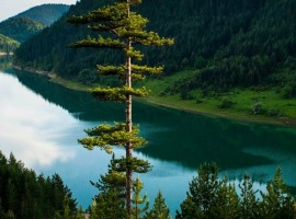 Naturaleza hermosura Serbia