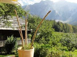 eco-glamping makek eslovenia