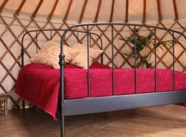 yurt eco-glamping campamientos