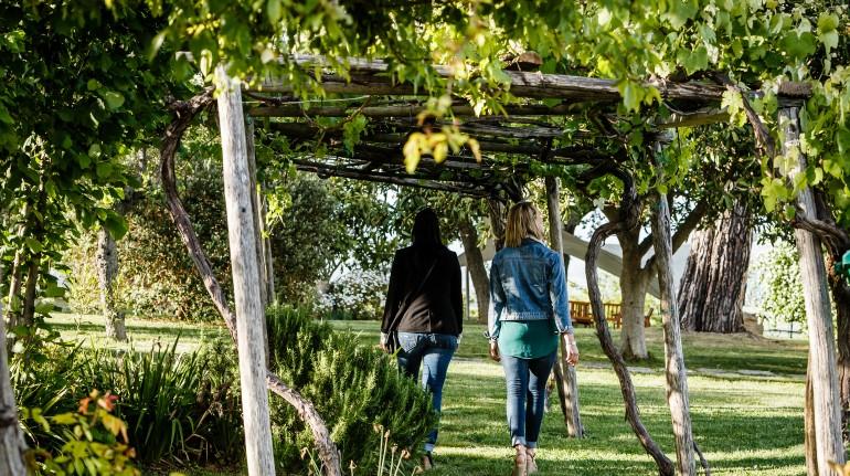 Entre las viñas y los paisajes de la Maremma Toscana
