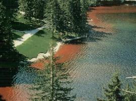 Una de las últimas veces en que el lago Tovel se vuelve rojo.