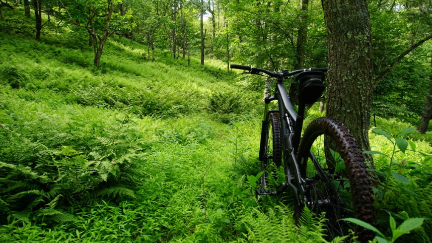 Ebike surround por naturaleza