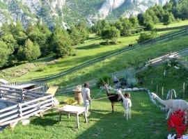 Imagen destacada: Dolomitas de Lago Nero y Brenta por Michele Zeni