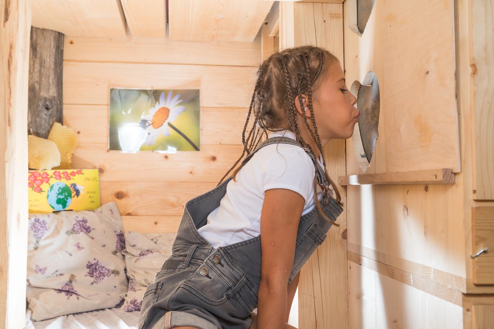 Apicultura, En tus vacaciones de Honey Bee, inhala el aire de las colmenas