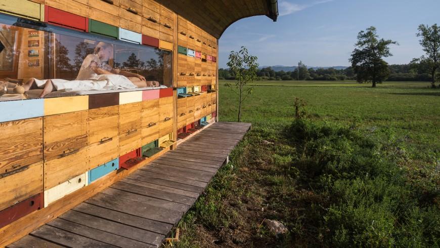 Disfruta de un masaje de miel y el zumbido de las abejas