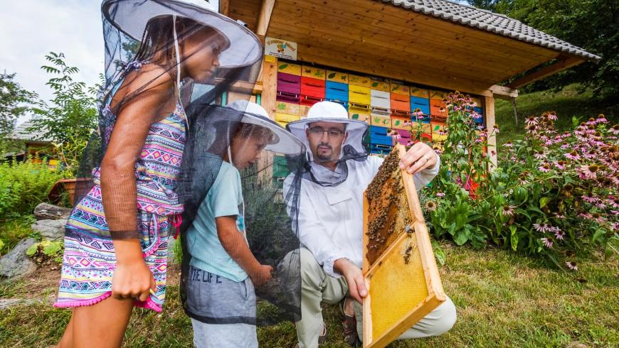 Vacaciones de abejas de miel en Eslovenia