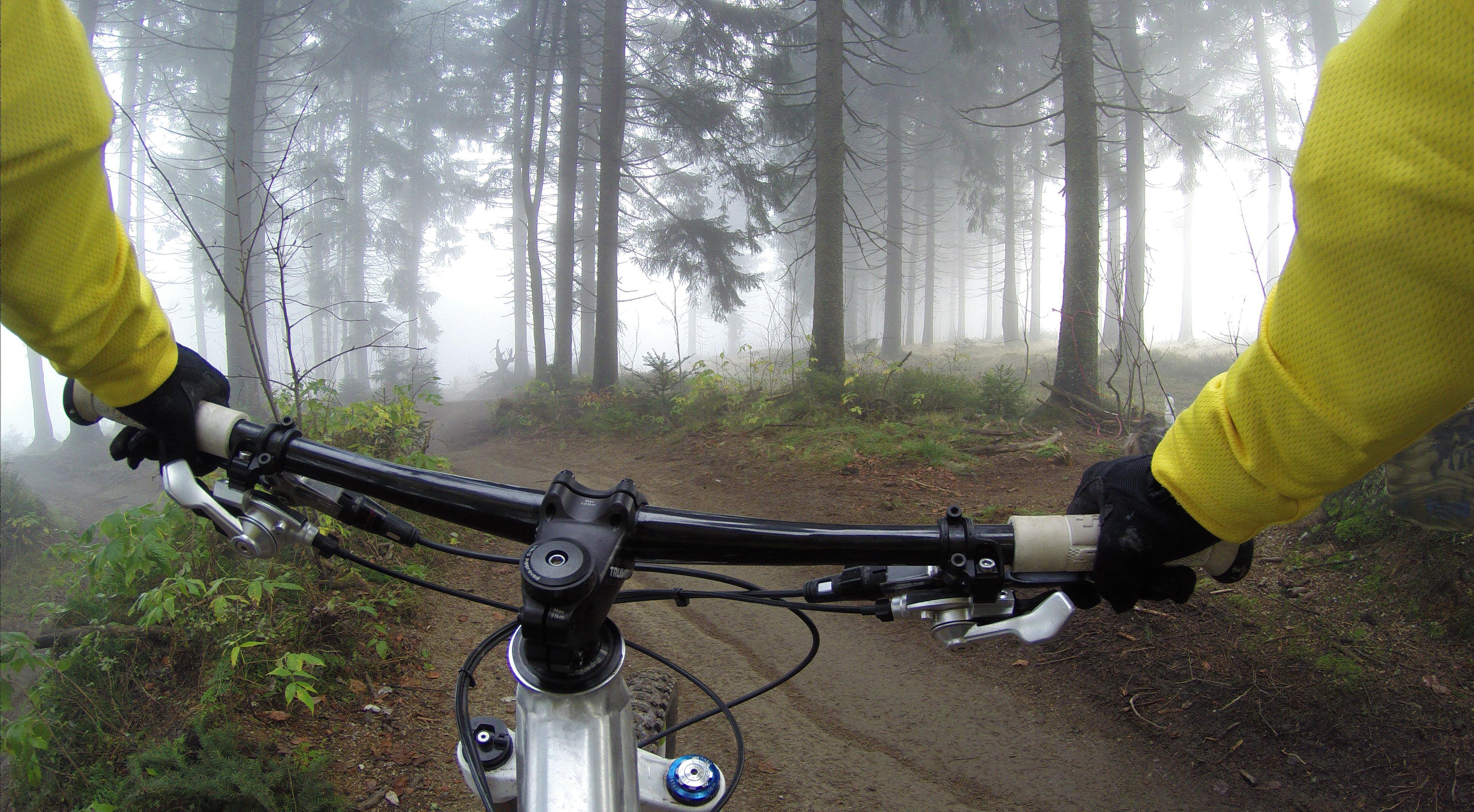 Sigue la aventura del sendero del oso en bicicleta. Adéntrate en el desierto profundo