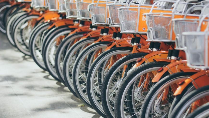 alquiler de bicicleta ofrecido por un hotel ecológico