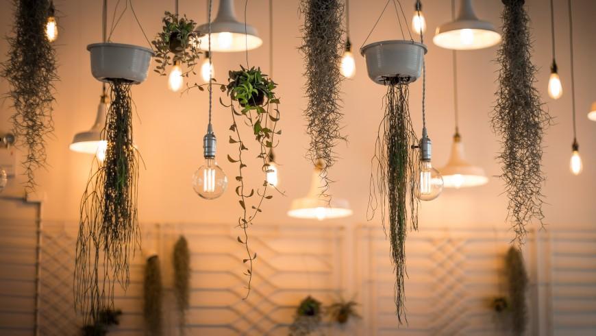 un hotel ecolñogico debería tener bombillas LED