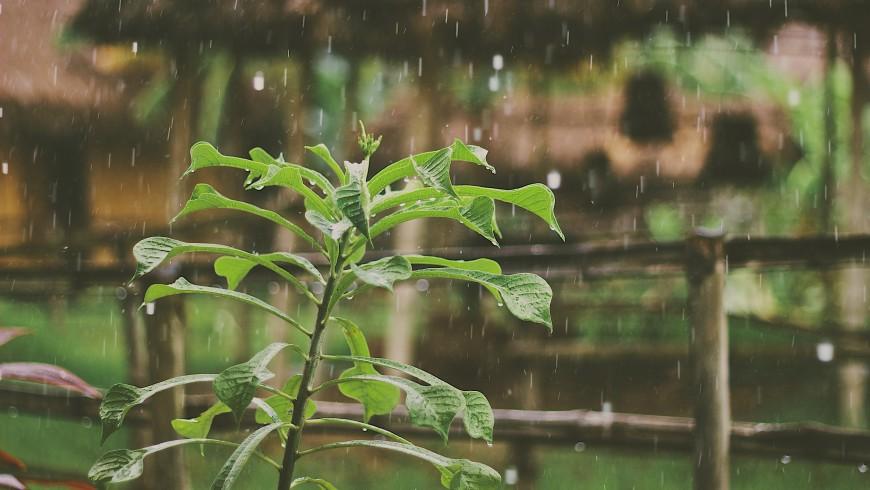 reutilizo del agua de lluvia