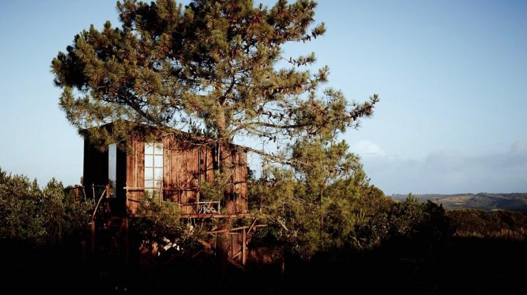 Casa del árbol en un camping ecológico de Portugal