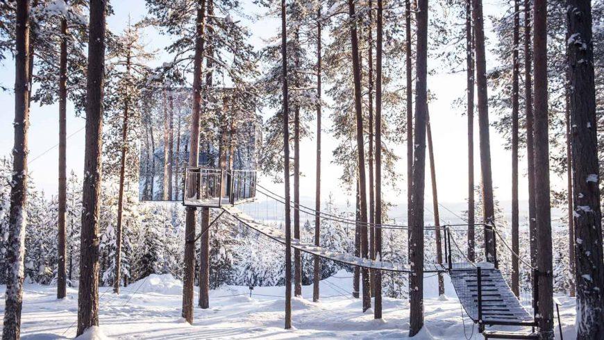 Casa del árbol con escaleras, en Suecia