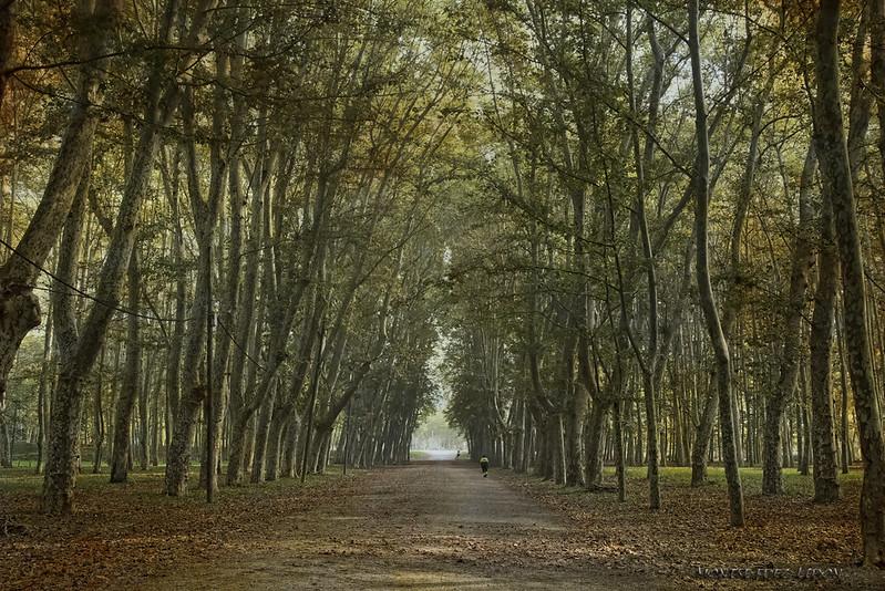 Girona Parque de La Devesa