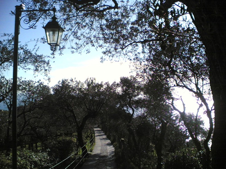 Monte de Portofino