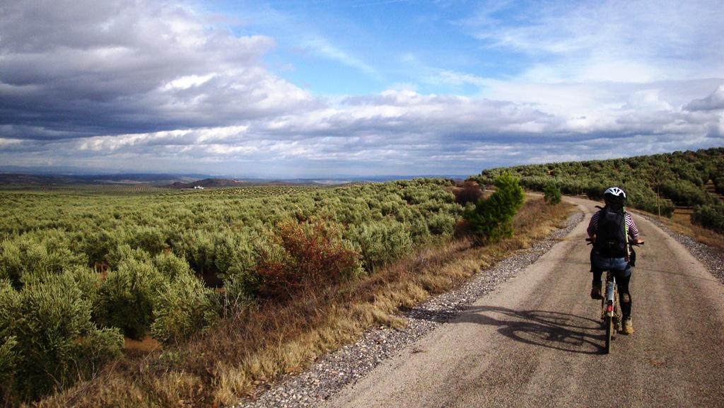 Rutas en bicicleta-Vía Verde del Aceite