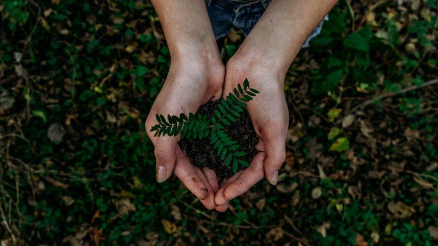 Certificaciones medioambientales