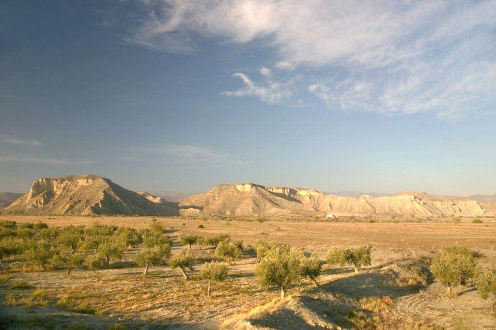 Paraje natural Desierto de Tabernas